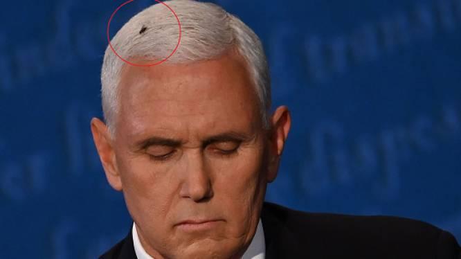 Vlieg zuigt plots alle aandacht naar zich toe tijdens debat Pence en Harris