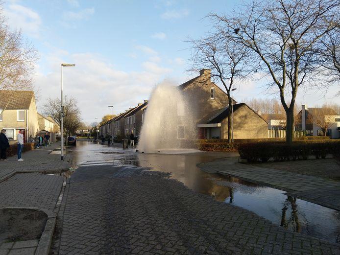 Waterleiding breekt op Schoudee in Bergen op Zoom. Een buurtbewoner maakte deze foto.