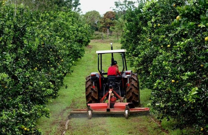 Ontwikkelingshulp, een groene investering en een rendement van tien procent. Beleggen in Costa Rica leek aantrekkelijk.