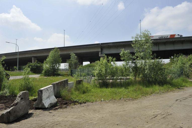 Langs de Woluwelaan komen in de toekomst verschillende buurtparken.