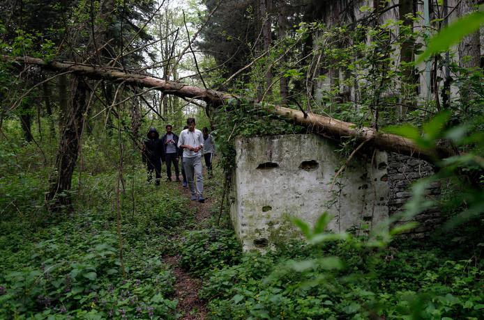 Migranten lopen door een bos op de grens tussen Servië en Kroatië. (archieffoto)
