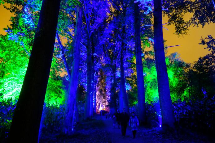 De Grote Schijn toverde het Rivierenhof vorig jaar voor het eerst om tot een magisch bos.