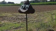 Gestolen Pittems 'Lachend Kakske' teruggevonden op domein Sint-Jozef
