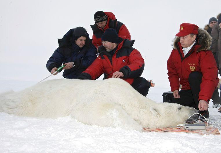 In 2010: de president bij een ijsbeer.