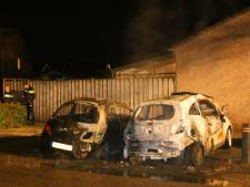 Geparkeerde auto's branden uit in Waardenburg