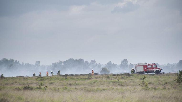 De brand op de Kalmthoutse Heide verwoestte 600 hectare natuurgebied. Beeld afp