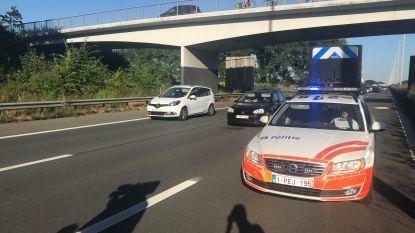 Autodief rijdt zich tijdens achtervolging vast in file op E40: hij loopt snelweg over, maar wordt aangereden