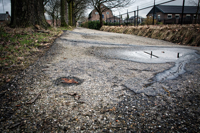 De fietspaden langs de Tilburgsebaan in Gilze zijn er volgens omwonenden belabberd aan toe door wortelopdruk.  De gemeente wil de eiken kappen en de paden opnieuw aanleggen.
