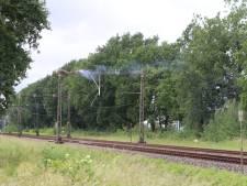 Ooievaarsnest geeft kortsluiting; treinverkeer plat bij Barneveld
