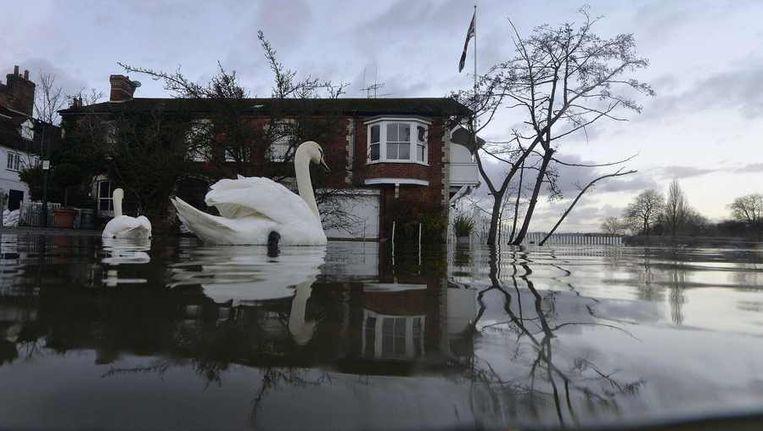 Huizen in Henley-on-Thames staan gedeeltelijk onder water, 13 januari. Beeld reuters