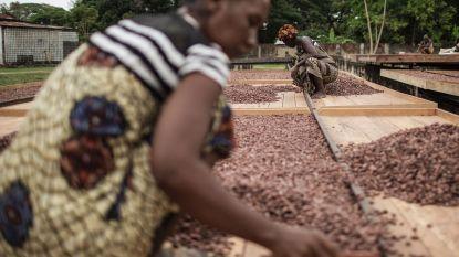 Oxfam vraagt eindelijk actie voor leefbaar inkomen voor cacaoboeren