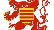 """Uitbater Hasselts café reageert op vlaggenrel: """"Wat ons betreft is er in Limburg maar één vlag en één gastvrije leeuw, en die drinkt Limburgs bier"""""""