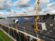 Onderzoek Kromme Rijnstreek: zonnepanelen op koeienstal maken asbestsanering betaalbaar