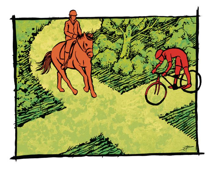 SITUATIE 1: Het ene bospad kruist het andere, ofwel: een kruispunt in het bos. Een mountainbiker komt aanfietsen en wil de kruising over, van rechts komt een paard met ruiter. Wie heeft er voorrang?  Antwoord onderop artikel.