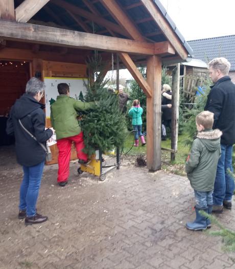 Maas en Walers gaan nu al op jacht naar kerstboom: 'Het wordt elk jaar eerder'