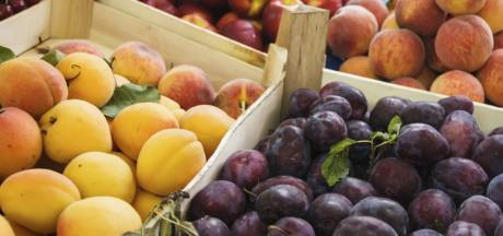 Aardbeien, bramen, abrikozen: hier komt ons zomerfruit vandaan