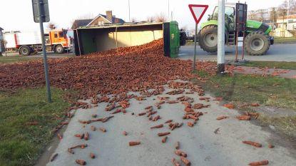 Aanhangwagen tractor kantelt: duizenden wortelen versperren rotonde