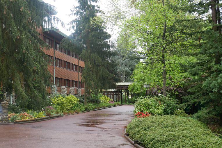 Disney Sequoia Lodge