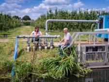 Droogte slaat zelfs toe in rivierengebied en dat merken fruittelers Henk en Ellen: 'Zonder water heb je een probleem'