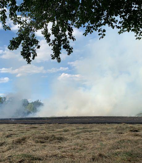 Brand op weiland in Gemonde, rook in wijde omgeving zichtbaar