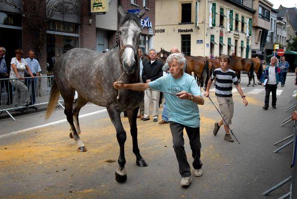 Paardenfokkers tonen jury en publiek hun mooiste dieren.