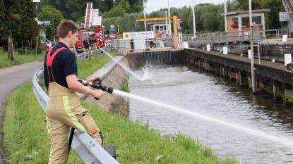Vissen happen naar adem na milieuvervuiling in Dender: Brandweer kan massale vissterfte vermijden