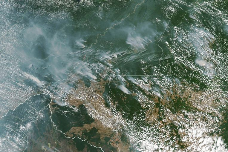 Satellietfoto van branden vorige week in de regenwouden van de Braziliaanse staten Amazonas, Para, Mato en Rondonia.   Beeld EPA