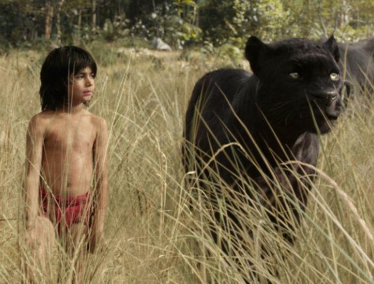 'The Jungle Book' krijgt een vervolg.
