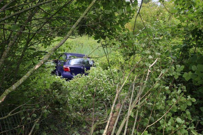 Een auto raakte van de weg nadat de bestuurder een niesbui kreeg.
