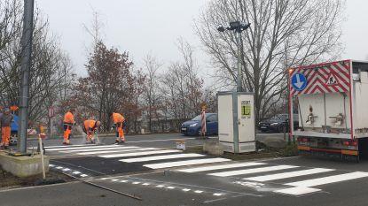 Arbeiders realiseren verplichte fietsoversteek op N15