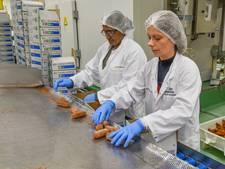 Extra banen: ook Kwekkeboom-kroketten komen straks uit Tilburg