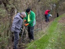 Jan de Leeuw uit Helmond plant 832 bomen op eigen grond: 'Goed voor de muizen en de vogels'