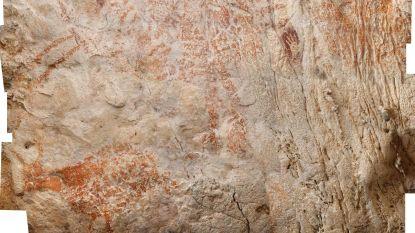 Oudste figuratieve rotstekening ter wereld ontdekt in Kalimantan