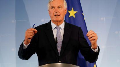 """EU-hoofdonderhandelaar slaat Britse hoop aan diggelen: """"Nieuwe deal over Ierse grens wordt moeilijk"""""""