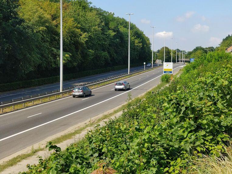 Door de werken aan de Lüdenscheidsingel zal je maar over één rijstrook kunnen op de ring tussen het Engels Plein en de Mechelsesteenweg.