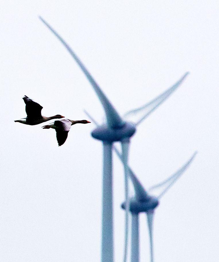 Houd de energietransitie wel democratisch