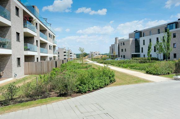 Aan de voormalige hippodroom werden de voorbije maanden al verschillende woningen gebouwd. Daar komen er nu nog 56 bij.