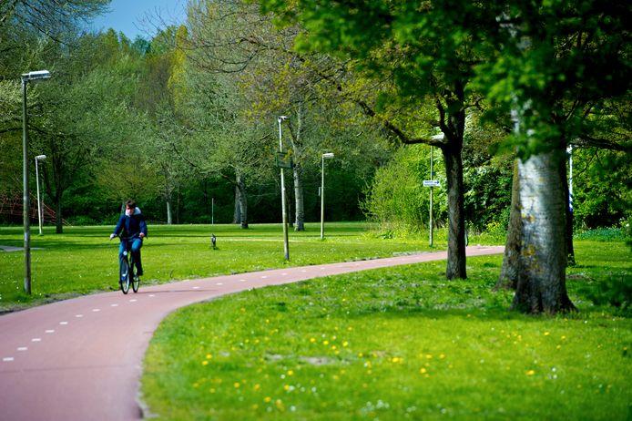 Veel bomen zijn ziek en vormen daardoor een bedreiging voor de veiligheid van de bezoekers, vooral langs de paden.