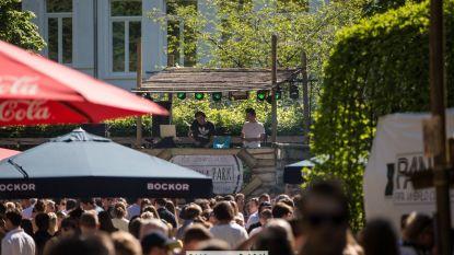 Plein ontvangt festival Pub in a Park