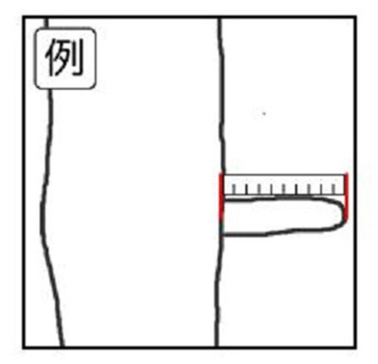hoe penis meten