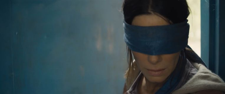 'Bird Box' met Sandra Bullock verscheen recent op Netflix.