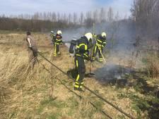 Natuurbrand in natuurgebied Oudland: een hectare jonge aanplant verloren gegaan