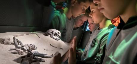 Zorgeloos at Hardinxveldse Trijntje 7500 jaar geleden haar bever