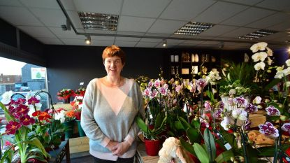 Nieuwe bloemenzaak Pluk in de Komenstraat