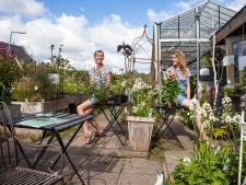 Groene aanpakkers: 'Mensen halen tegels weg en zetten er planten voor terug'