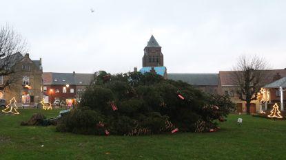 Kerstbomen inzamelactie