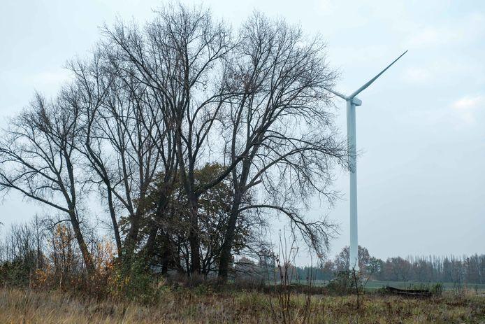 De afbraak van de windturbines op de Electrabelsite in Schelle.