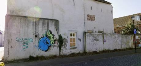 Kunstwerk met veel groen voor de bieb in Boxtel prima, maar voor 40.000 euro....
