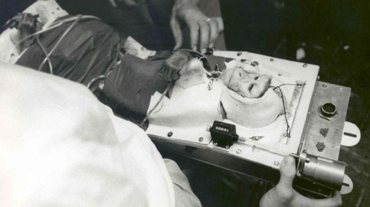 De capsule die voor Able gebouwd werd.