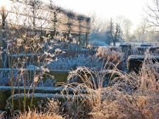 Het is februari en dus de hoogste tijd voor deze tuinklussen